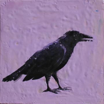 Raven Guardian 12x12-5