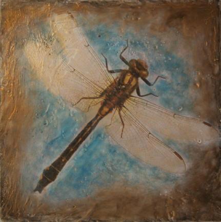 Dragonfly VIII