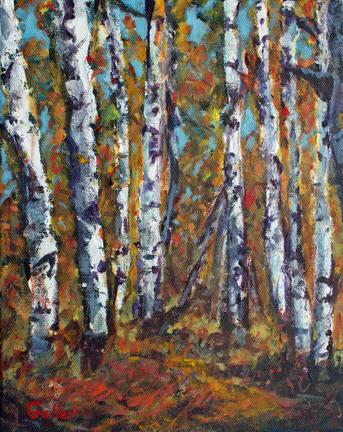 • Birches
