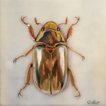 Gold Bug II
