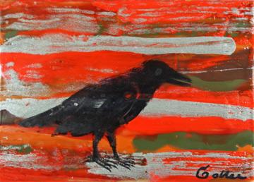Raven Native 11