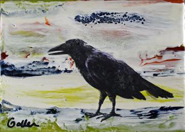 Raven Native 12