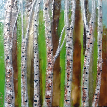 Birch Thicket III