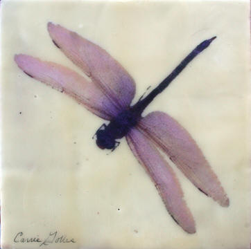 Dragonfly VII